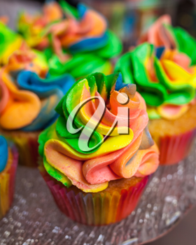 Colorful cupcakes with rainbow cream for Carnival