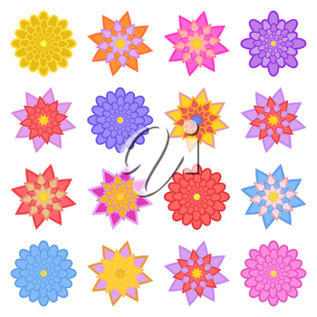 A set of beautiful colorful flowers. Isolated on white background. Sixteen variants. Suitable for design.